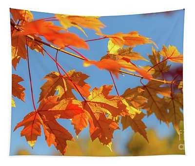 Fall Foliage Tapestry