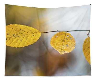 Fall In Triplicate Tapestry