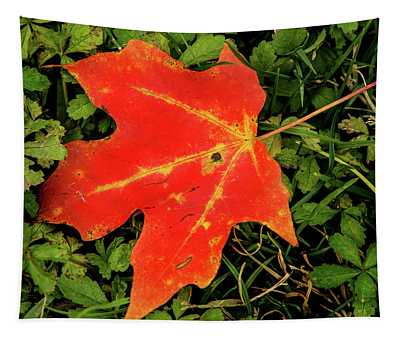 Fall Leaf Tapestry