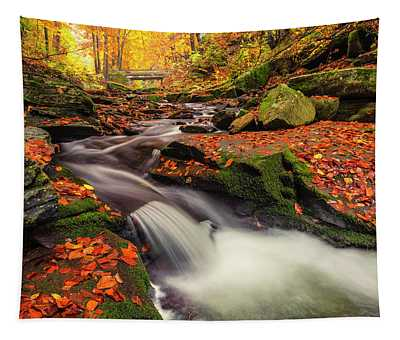Fall Power Tapestry
