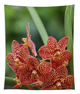 Family Of Orange Spotted Orchids Tapestry