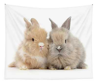 Fawn Love Bunnies Tapestry