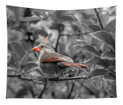 Female Cardinal Selective Color Tapestry