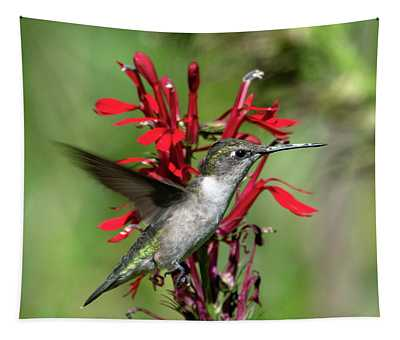 Female Ruby-throated Hummingbird Dsb0325 Tapestry