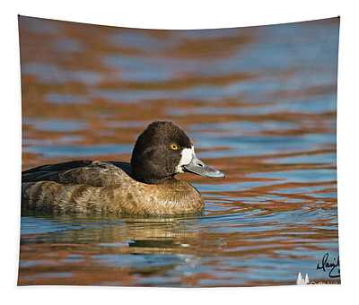 Female Scaup Tapestry