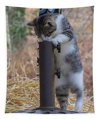 Feral Kitten Tapestry