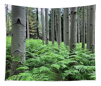 Ferns In An Aspen Grove Tapestry