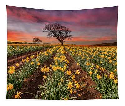 Field Of Daffodils Sunset Tapestry