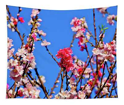 Pinks And Blues Tapestry
