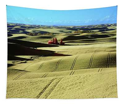 Fields In The Palouse Tapestry