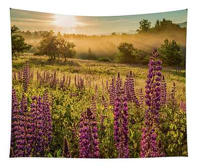 Fields Of Lupine Tapestry