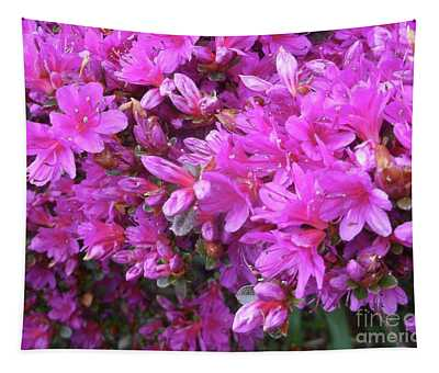 Fine Art Photo 6 Tapestry