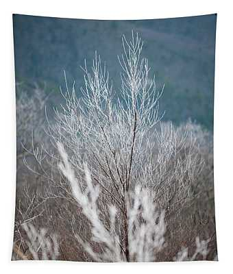 Fingers Of Hoarfrost Tapestry