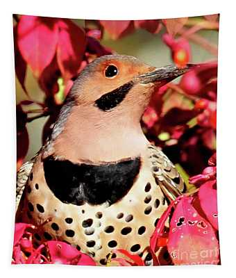 Yellow-shafted Flicker Tapestry