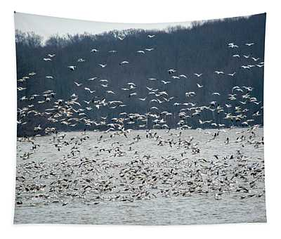 Flock Of White Snow Geese Tapestry