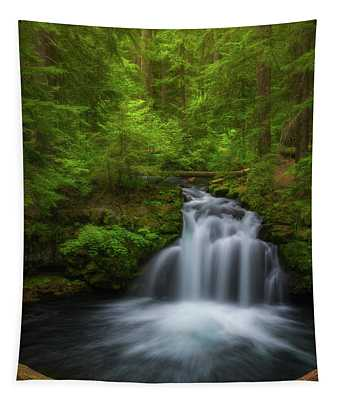 Flowing Through The Forest Tapestry