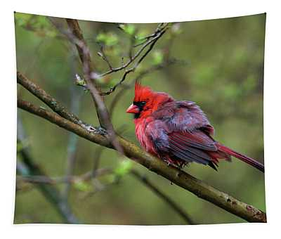 Fluffing Up My Feathers Tapestry