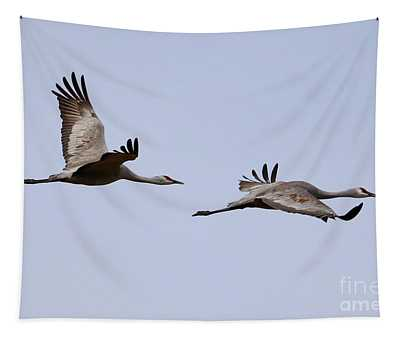 Fly With Two Sandhills Tapestry