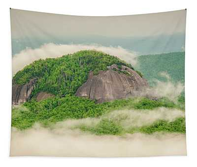Fog Over Looking Glass Rock Tapestry