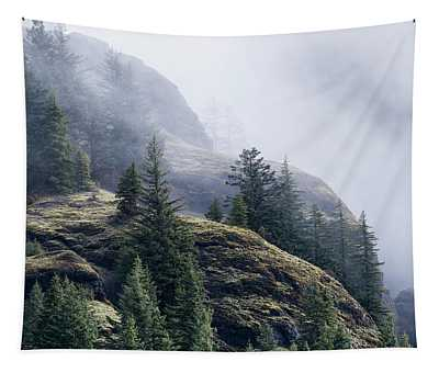 Foggy On Saddle Mountain Tapestry