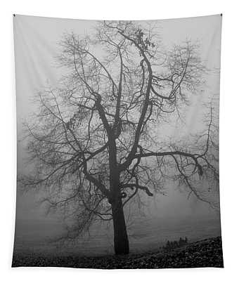 Foggy Tree In Black And White Tapestry