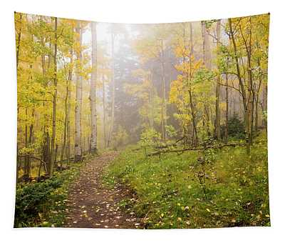 Foggy Winsor Trail Aspens In Autumn 2 - Santa Fe National Forest New Mexico Tapestry