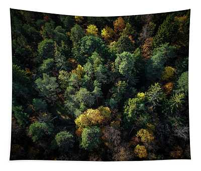 Forest Landscape - Aerial Photography Tapestry
