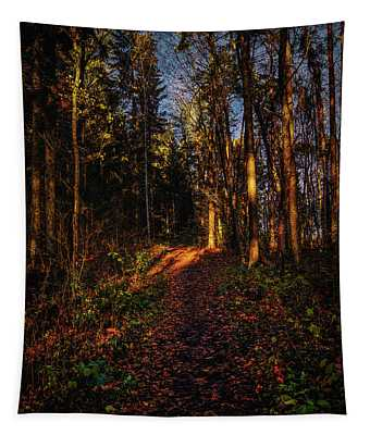 Forest Light #i1 Tapestry