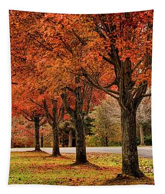 Four Fall Trees Tapestry