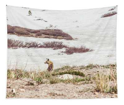 Fox Resting At Loveland Pass Tapestry