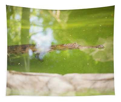Freshwater Crocodile Tapestry