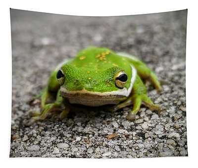 Frogger Tapestry