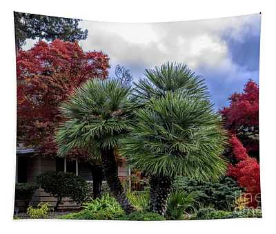 Front Yard Landscape Fall Colors  Tapestry