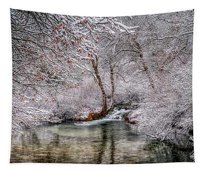 Frosty Pond Tapestry