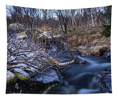 Frozen River And Winter In Forest Tapestry