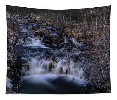 Frozen River In Forest - Long Exposure With Nd Filter Tapestry