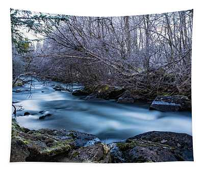 Frozen River Surrounded With Trees Tapestry