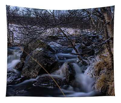 Frozen Stream In Winter Forest Tapestry