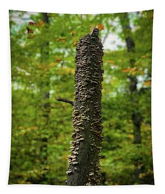Fungus Among Us Tapestry