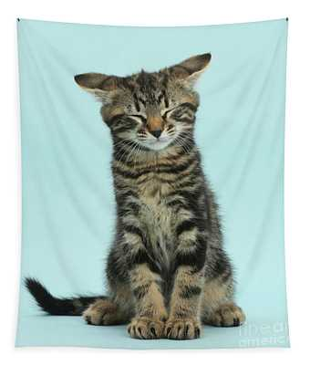 Funny Face Kit Tapestry