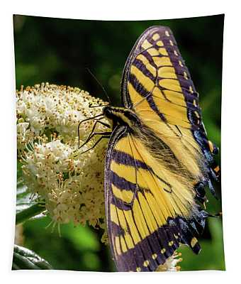 Fuzzy Butterfly Tapestry