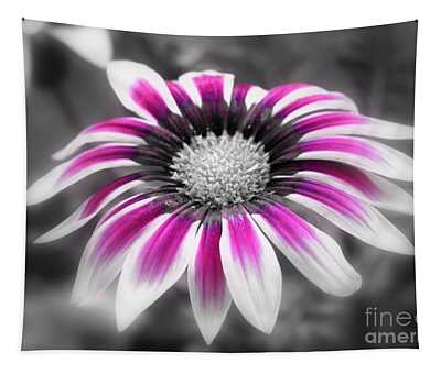 Tapestry featuring the photograph Gazania Pink by Patti Whitten