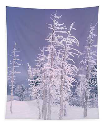 Ghost Trees In Yellowstone National Park Tapestry
