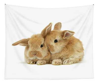 Ginger Baby Bunnies Snuggling Tapestry