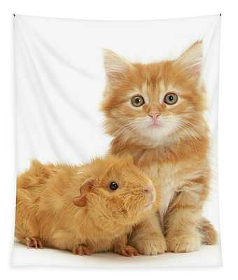 Ginger Kitten And Guinea Friends Tapestry