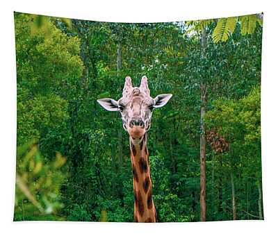 Giraffe Looking For Food During The Daytime. Tapestry