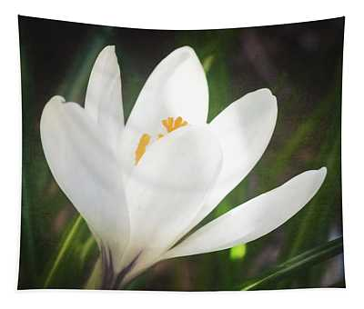 Glowing White Crocus Tapestry