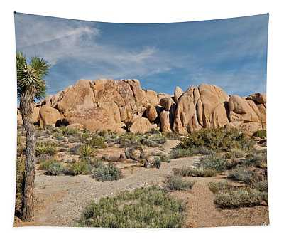 Gneiss Rock Formation And Joshua Tree Tapestry