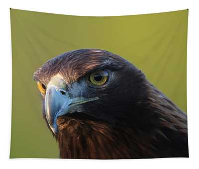 Golden Eagle 5151802 Tapestry