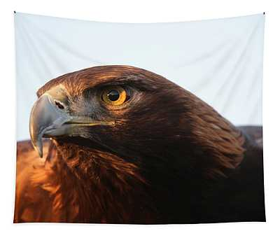 Golden Eagle 5151803 Tapestry